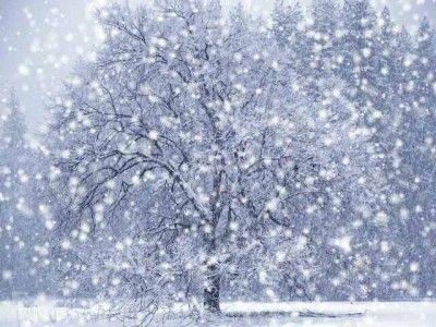 Снежинськ і перспективи