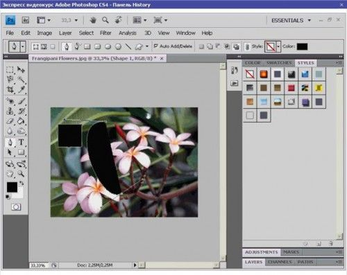 Відеокурс adobe_photoshop_cs4.